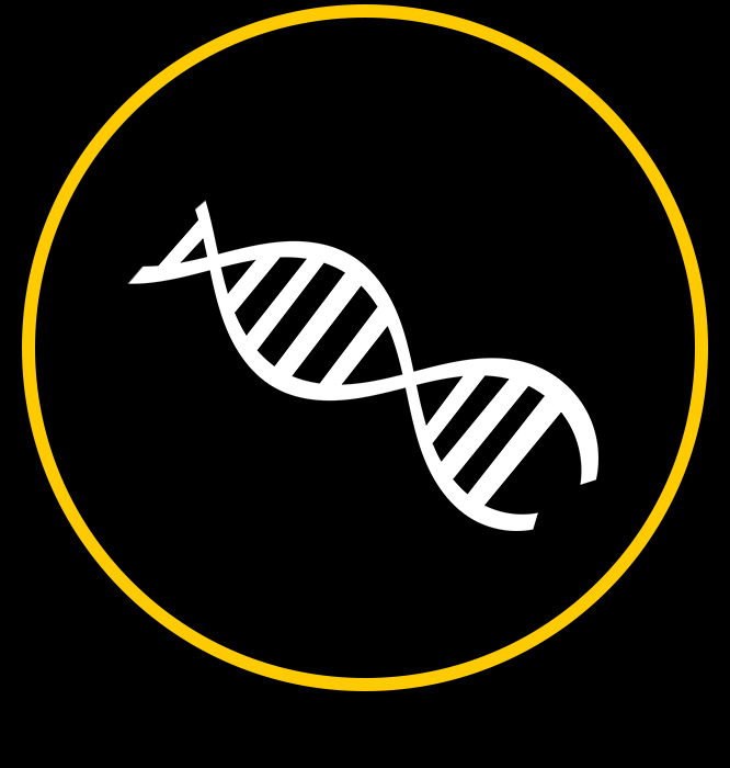 Unsere DNA